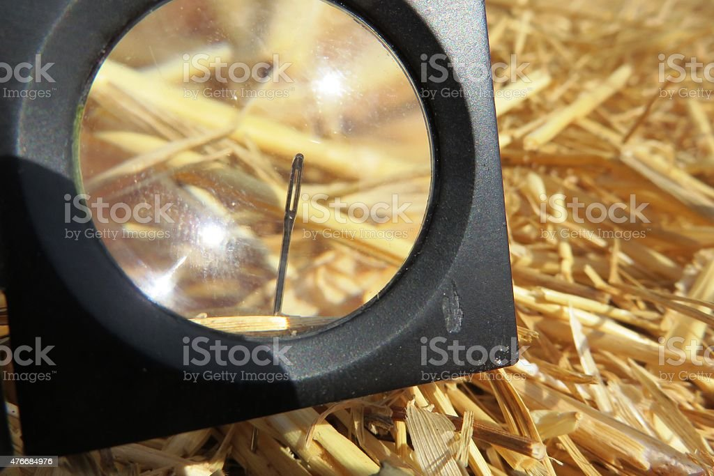 Needle in a haystack stock photo