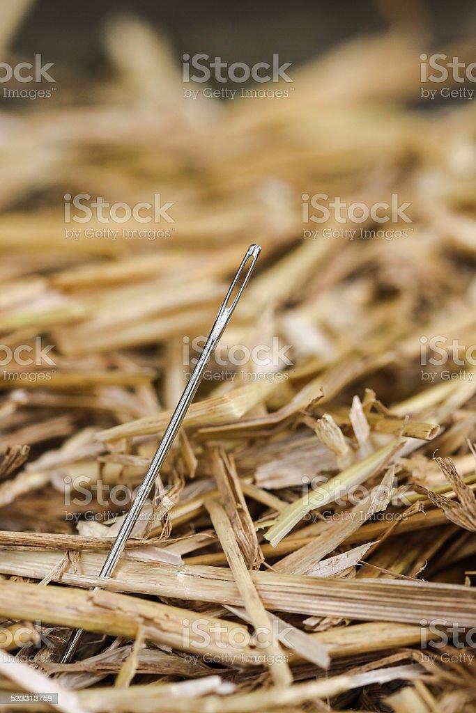 Needle in Haystack stock photo