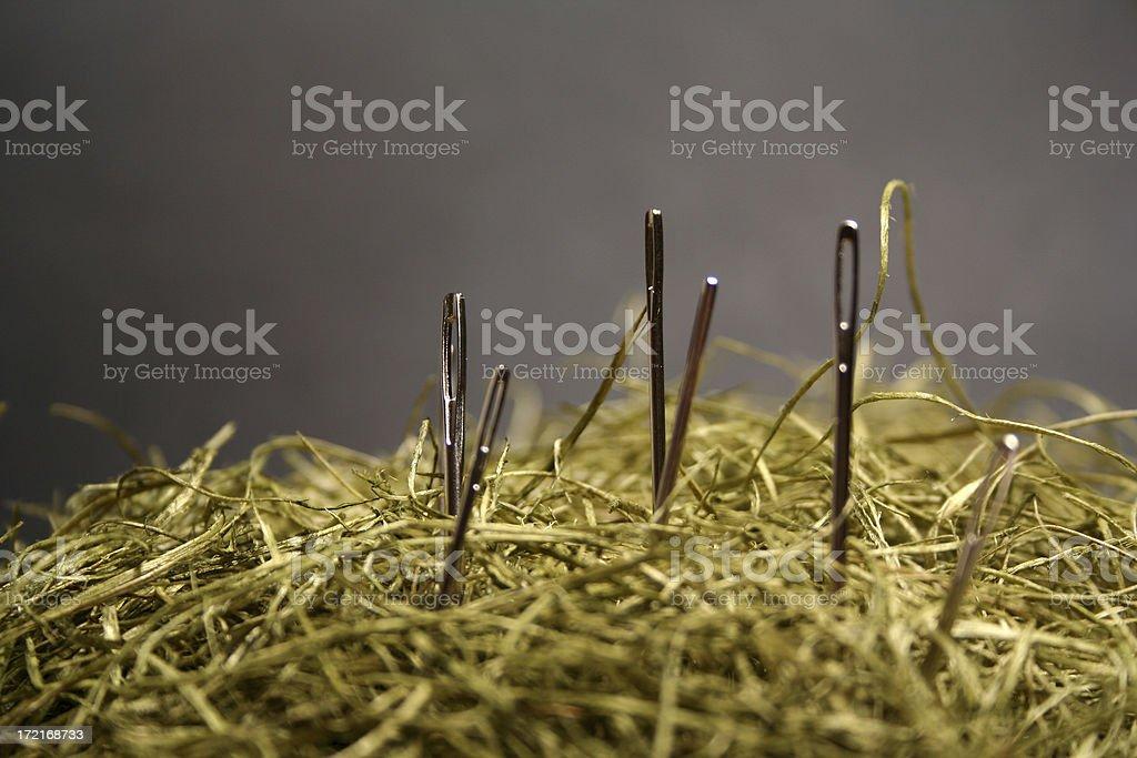 Needles in a hyastack stock photo