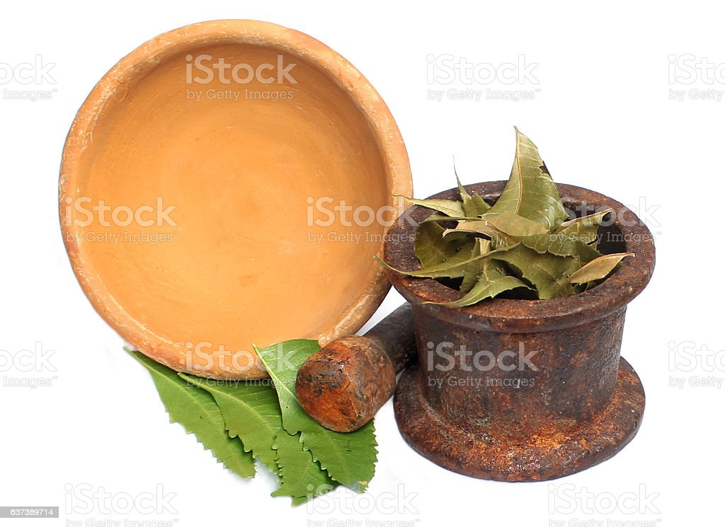 Neem leaf with soil bowl & iron mortar and pastle stock photo