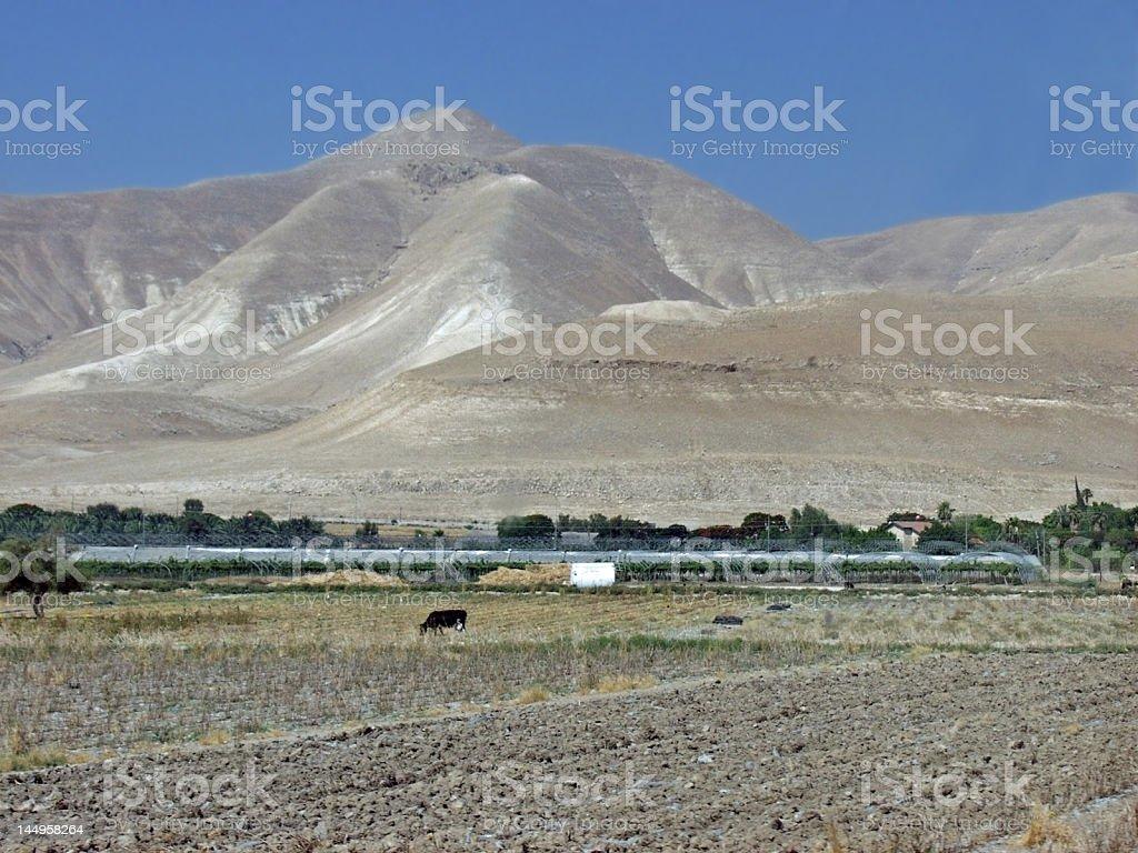 Negev desert from the Jordan Valley royalty-free stock photo