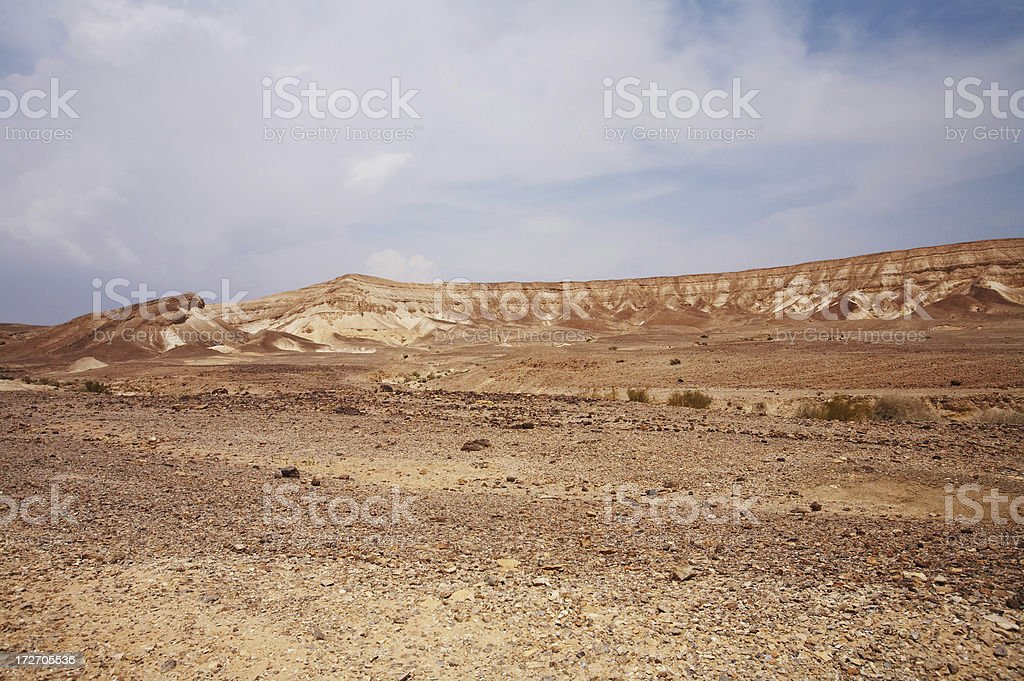 Negev royalty-free stock photo