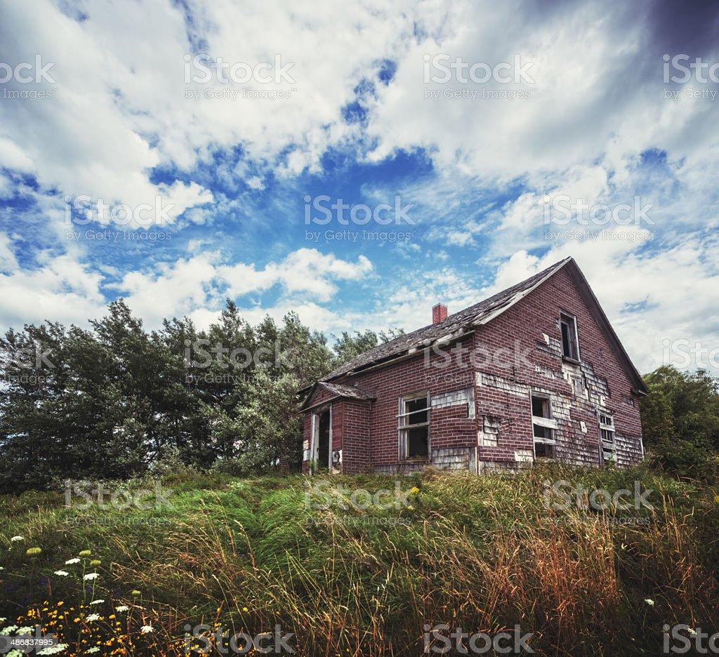 Neglected in Summer royalty-free stock photo