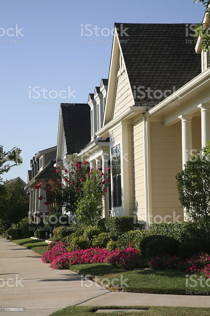 Neighborhood Homes royalty-free stock photo