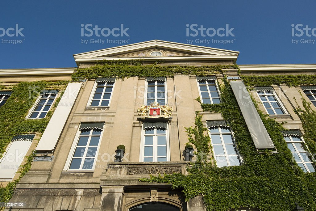 Neo classical building with boston Ivy stock photo