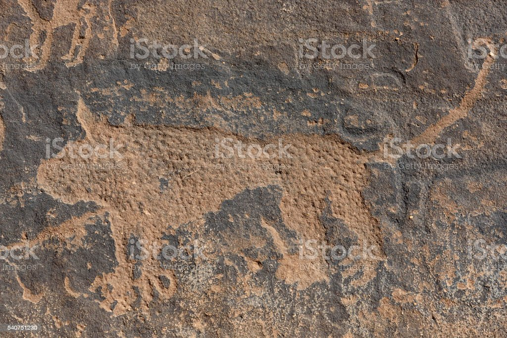 Neolitic rock carving of a lion from Jubba (Saudi Arabia) stock photo