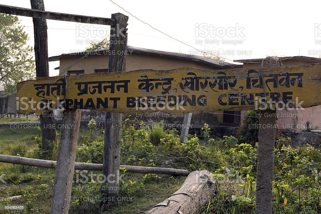Nepal: Elephant Breeding Centre at Bharatpur stock photo