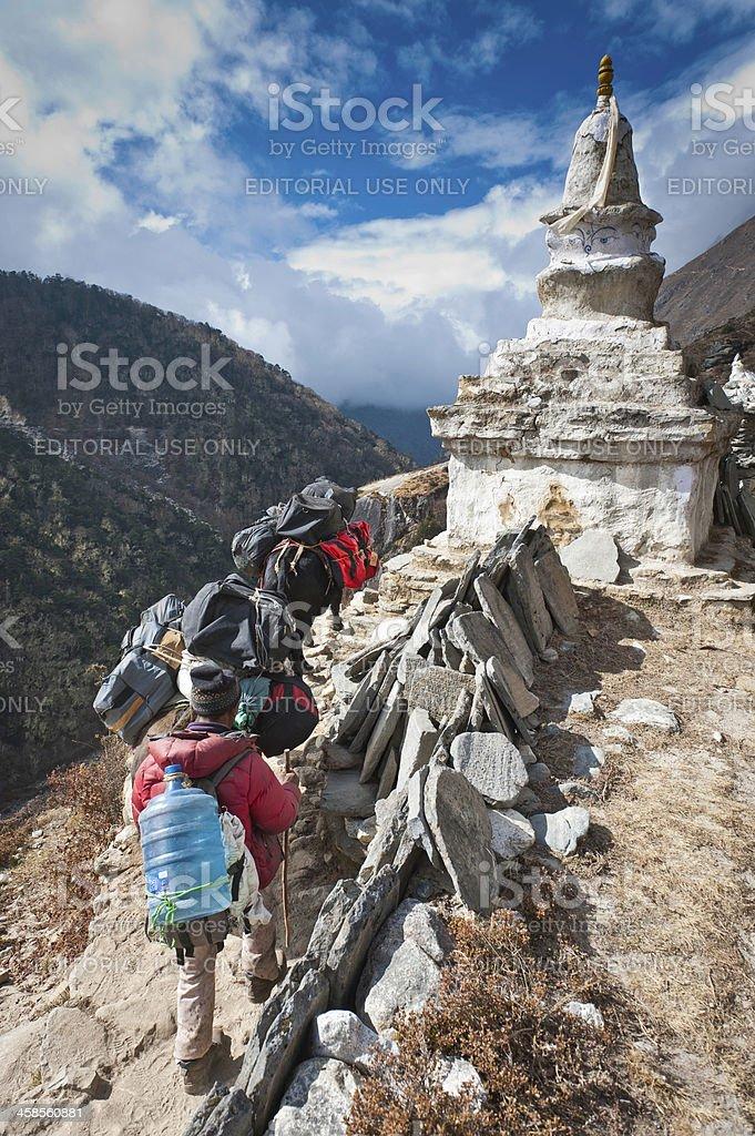 Nepal Sherpa driving yaks past Buddhist stupa Himalaya mountain trail royalty-free stock photo