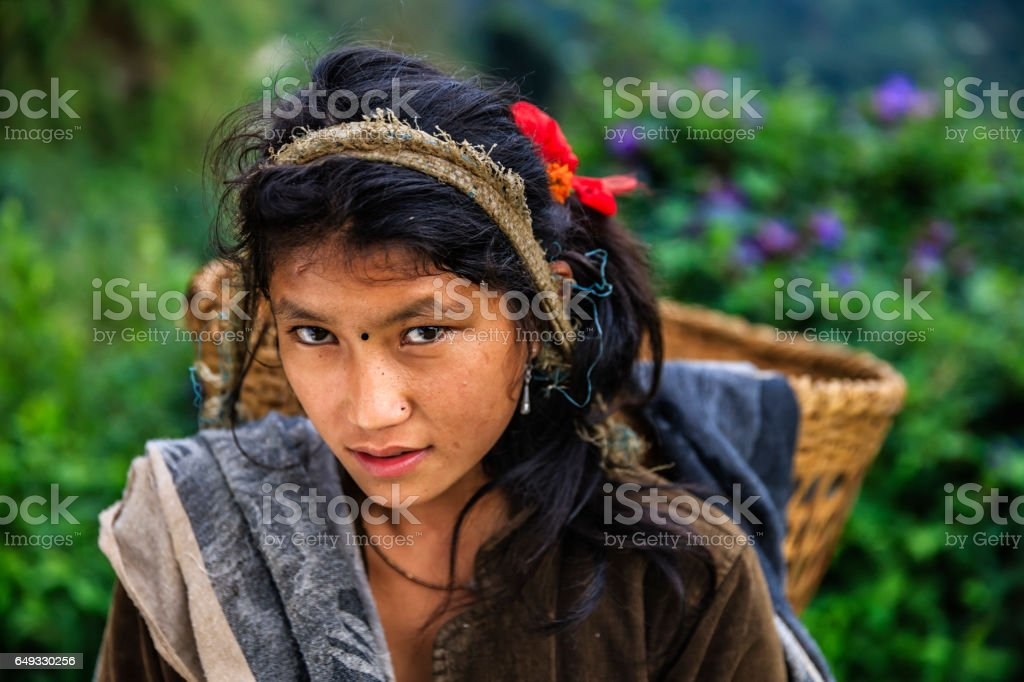 Nepalese young girl carrying a basket near Annapurna Range stock photo