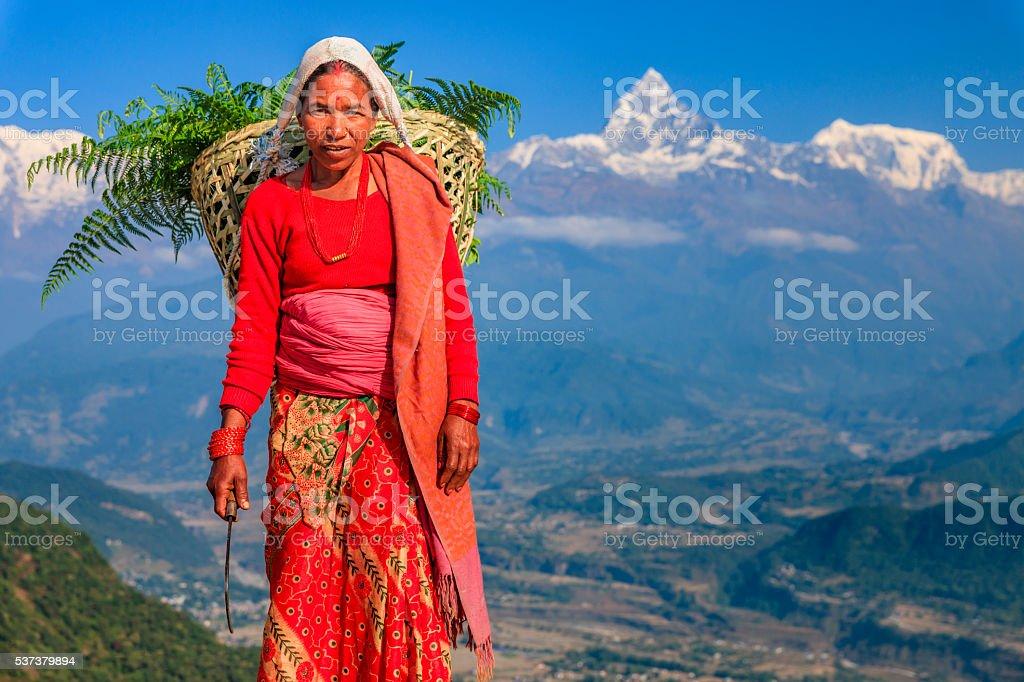Nepali woman carrying basket, Machapuchare on background, Pokhara, Nepal stock photo