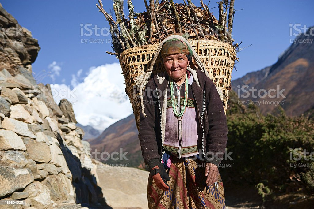 Nepali woman carrying basket of brushwood royalty-free stock photo
