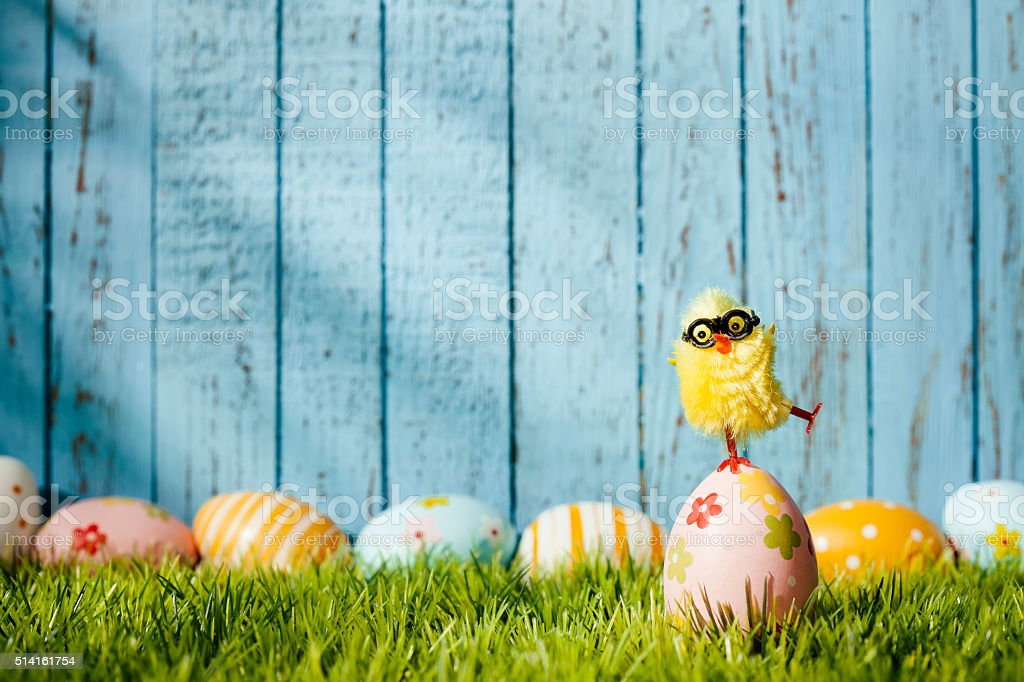 Nerd Easter Chicken - Balancing Egg Humor Wood Season Background stock photo
