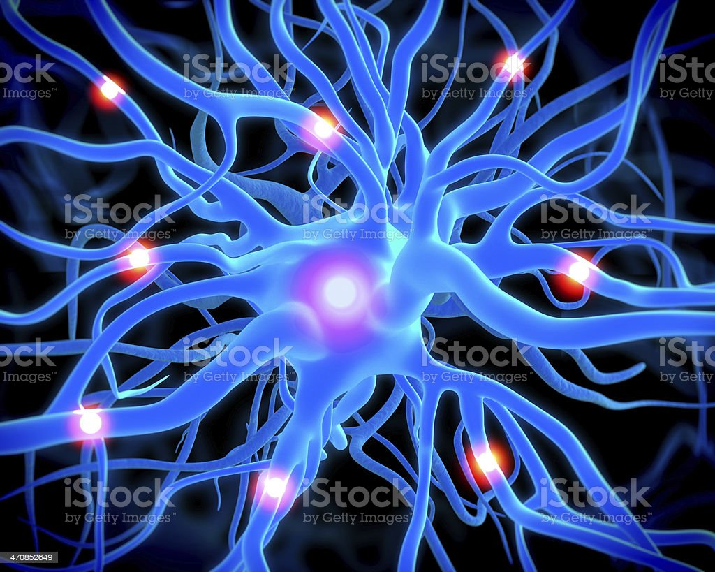 nerve cell or neurons royalty-free stock photo