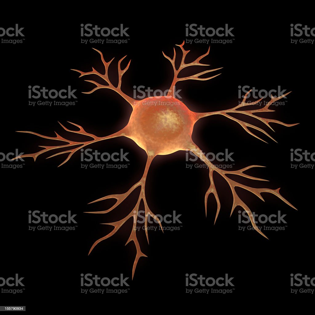 nerve cell royalty-free stock photo