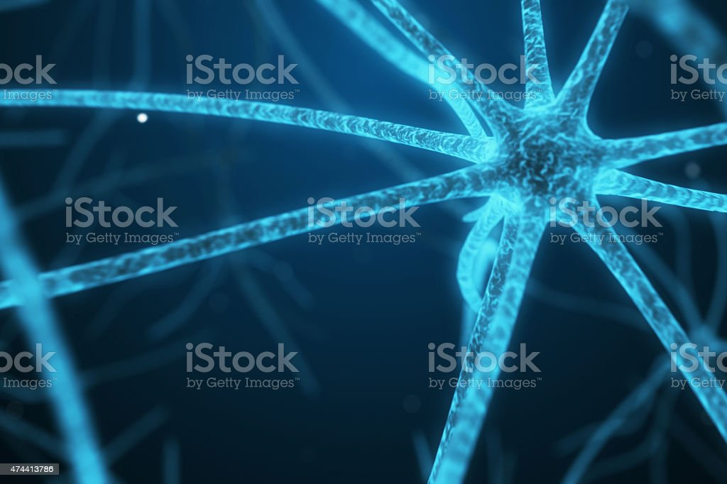 Nerve cell. stock photo