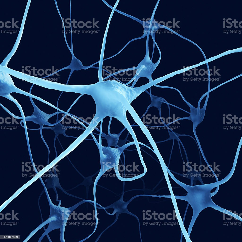 Nerve Cells XL+ stock photo