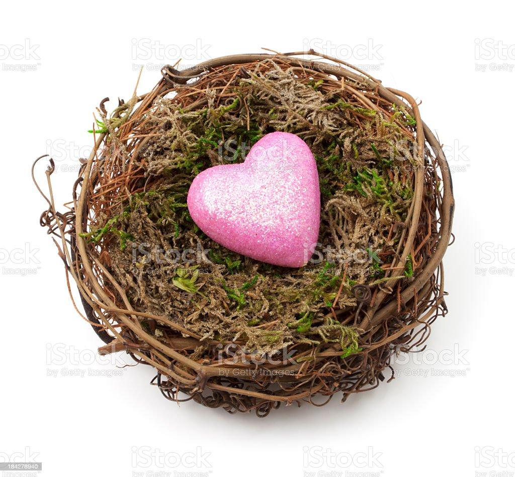 Nest und Herz – Foto