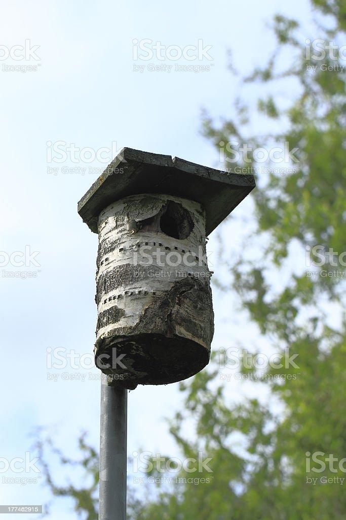 Nest box royalty-free stock photo