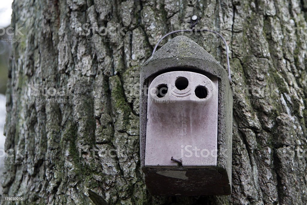 Nest box with three holes ingress stock photo