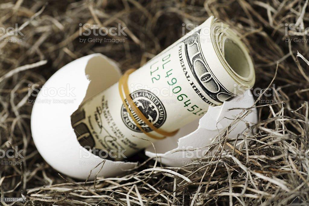 Nest Egg Hatching stock photo