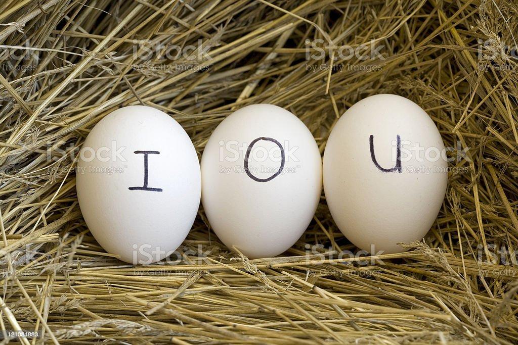 Nest egg IOU. stock photo