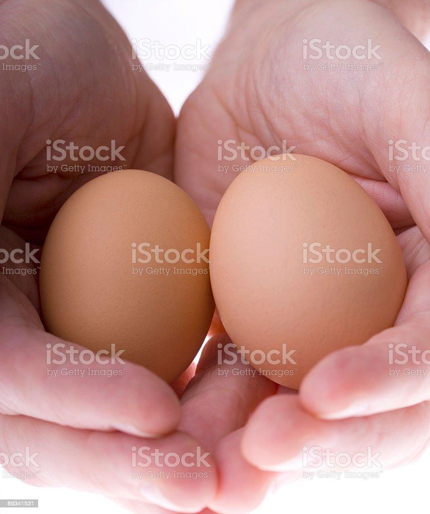 Nest egg macro royalty-free stock photo