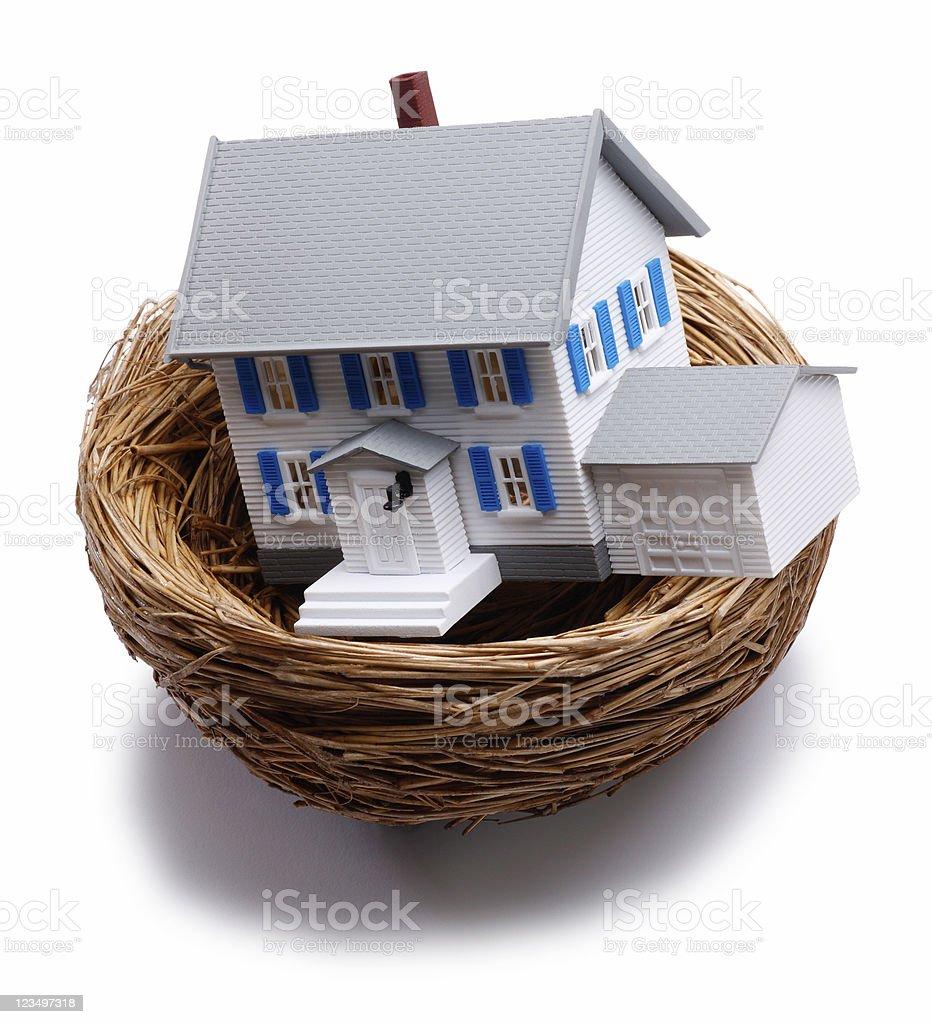 Nest Egg royalty-free stock photo