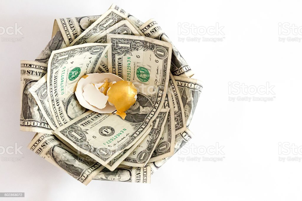 Nest egg shells in a nest made of greenbacks stock photo