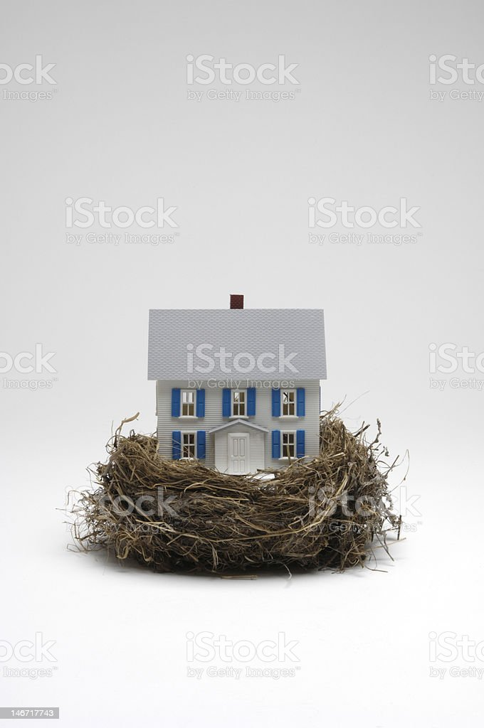 Nest Egg Vertical royalty-free stock photo