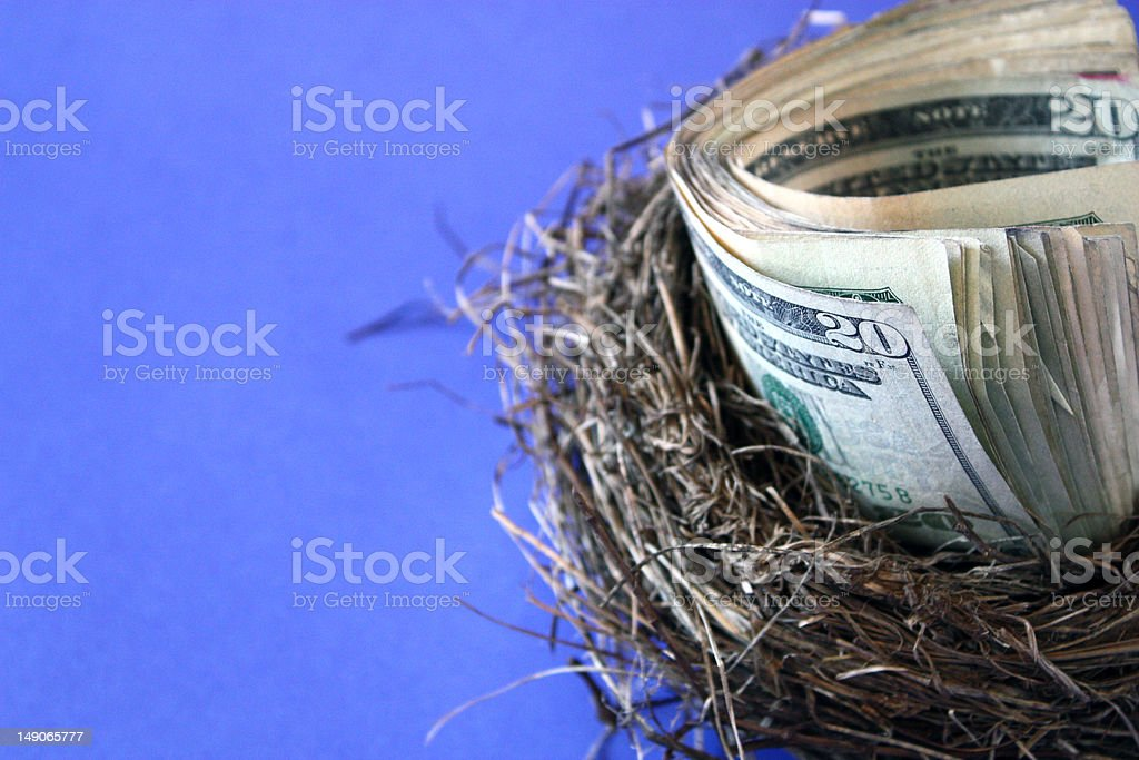 Nest Egg with cash royalty-free stock photo