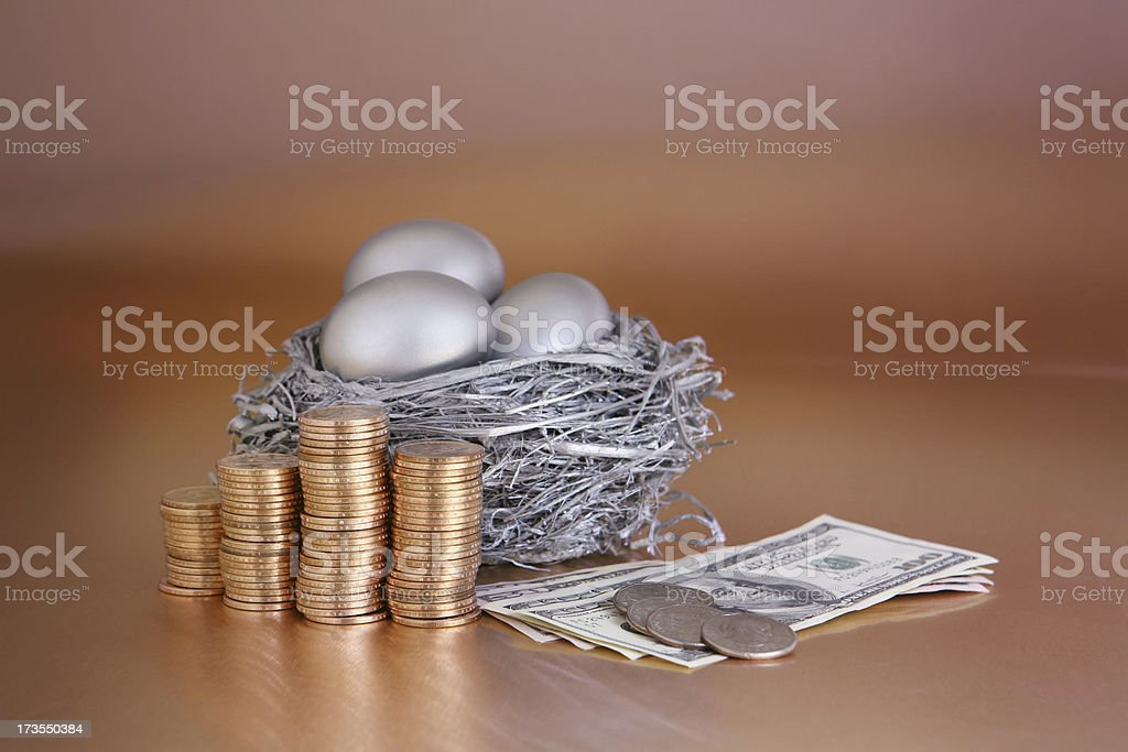 Nest Egg with Money stock photo