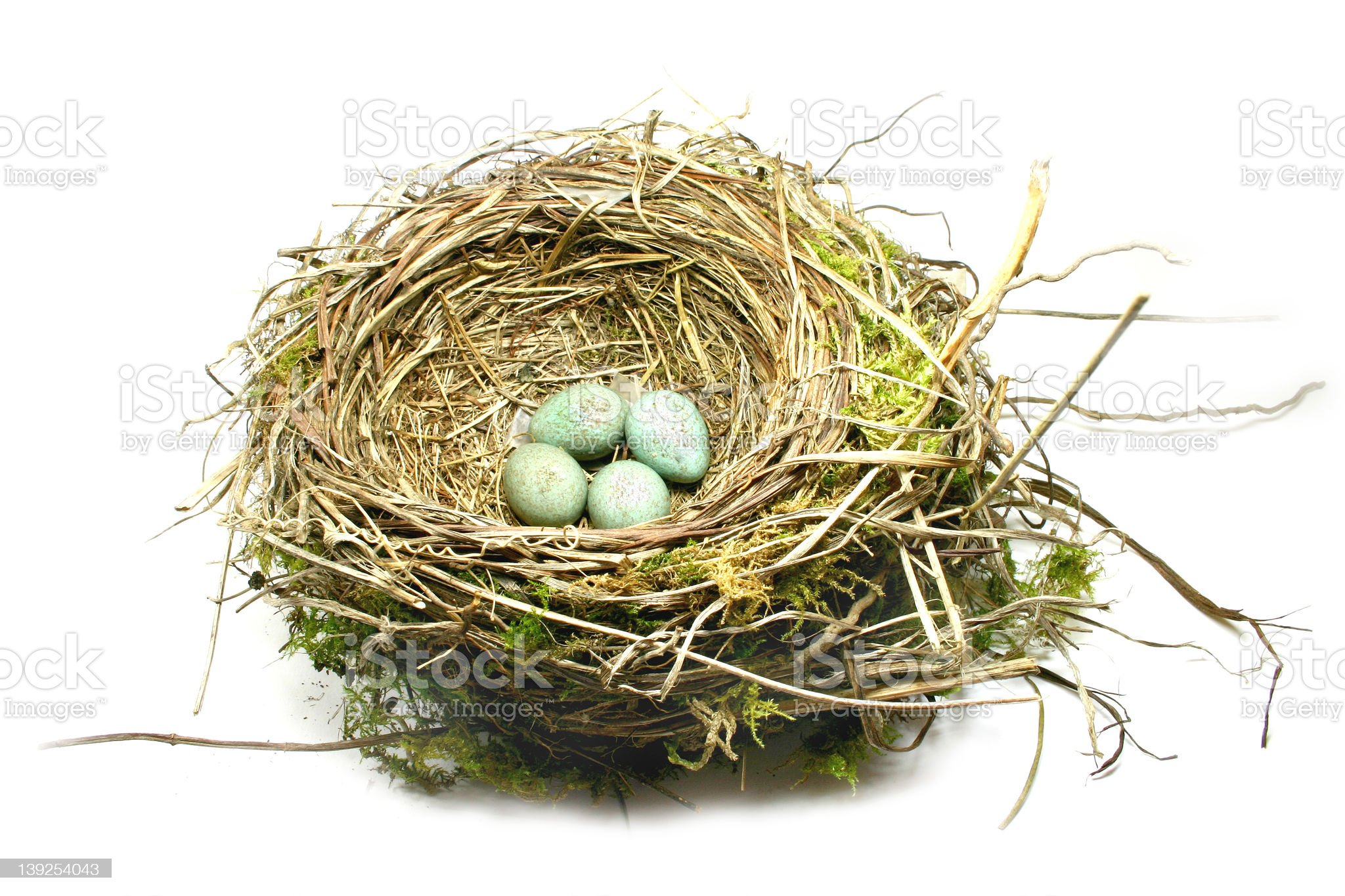 Nest royalty-free stock photo