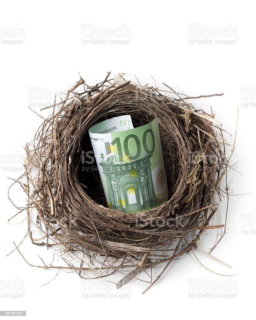 Nest with a one hundred euro banknote royalty-free stock photo