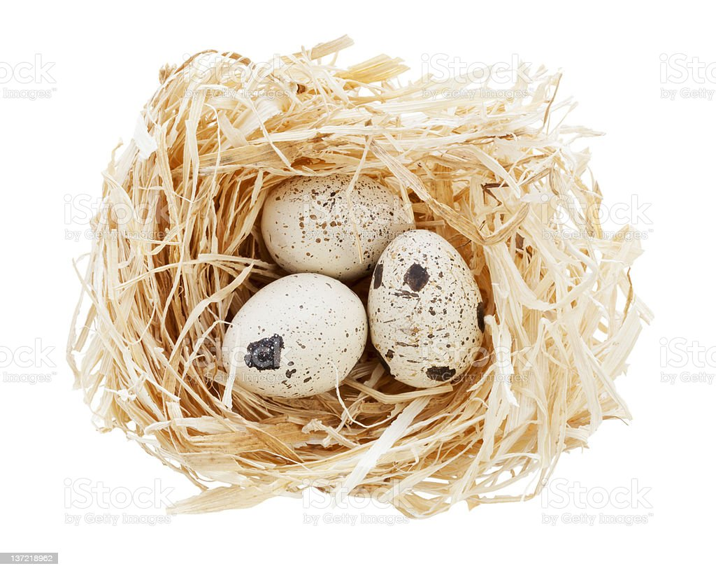nest with eggs isolated royalty-free stock photo
