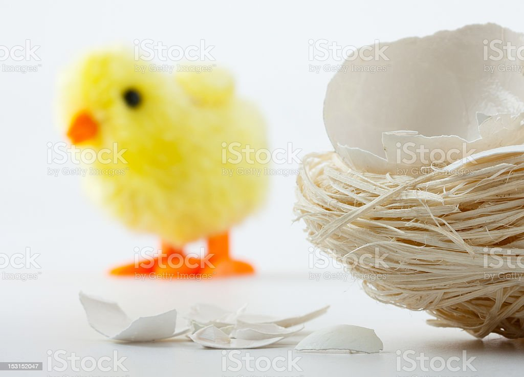 Nest with eggshell cracks and toy chicken royalty-free stock photo