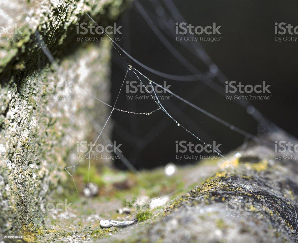 Net on crucifix.. stock photo