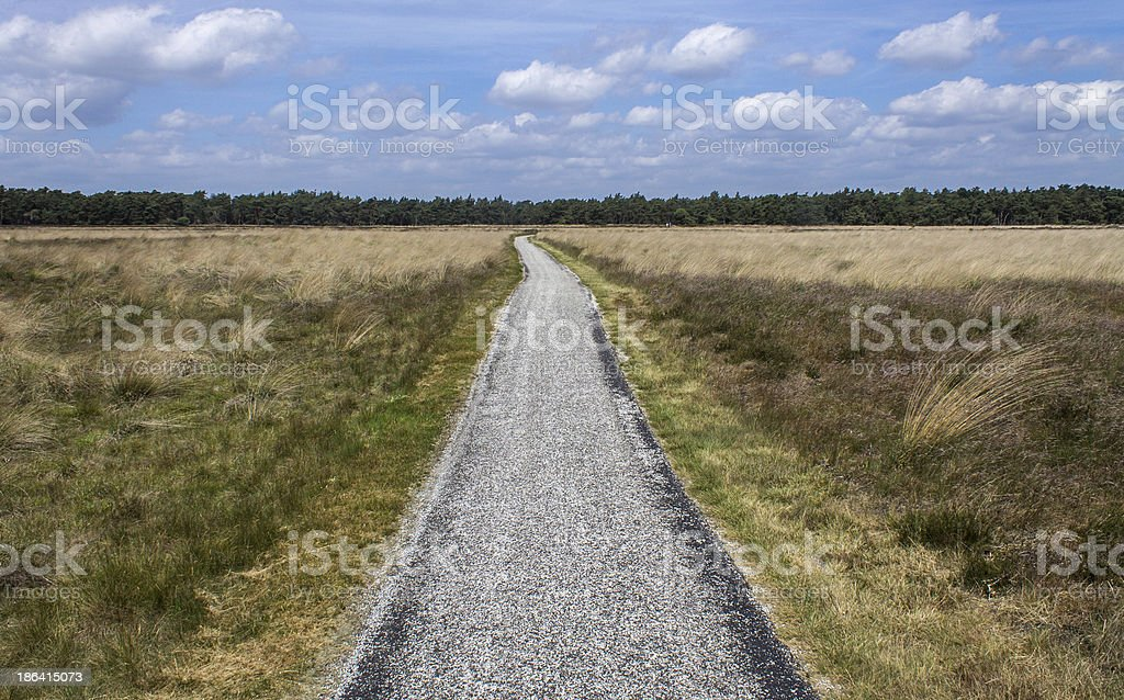 Netherlands landscape royalty-free stock photo