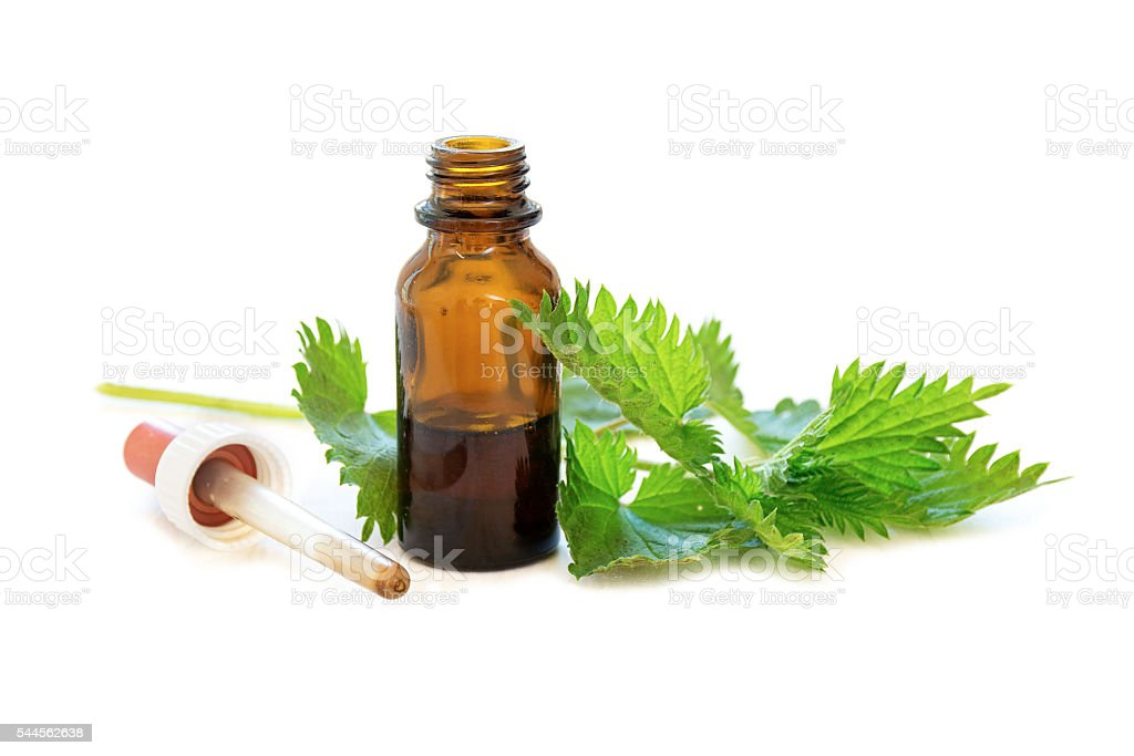nettle tincture in a bottle and leaves on white wood stock photo