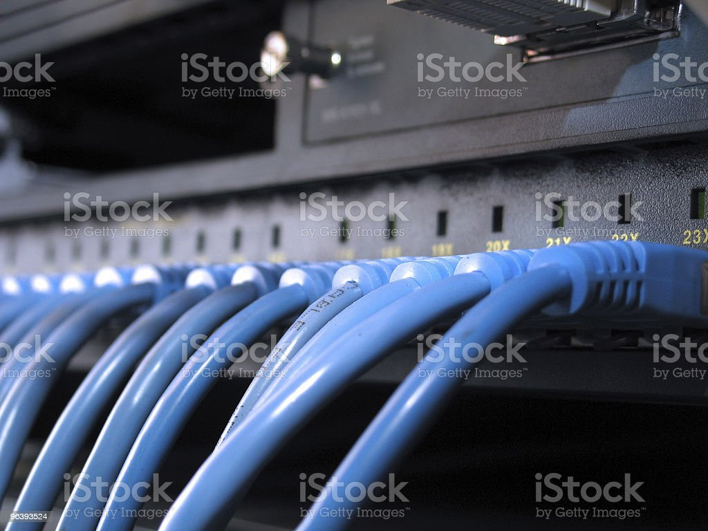 Network Cables Row royalty-free stock photo
