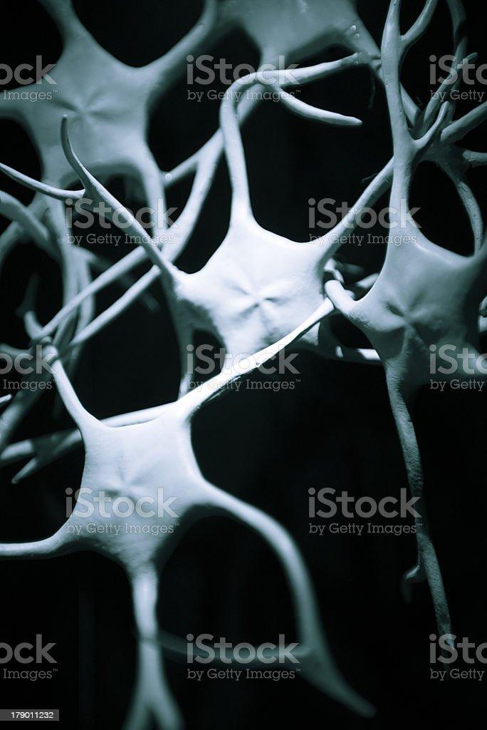 Neurones royalty-free stock photo