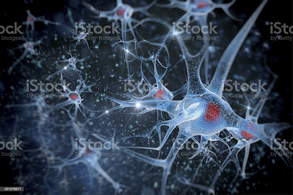 neurons and their connections stock photo