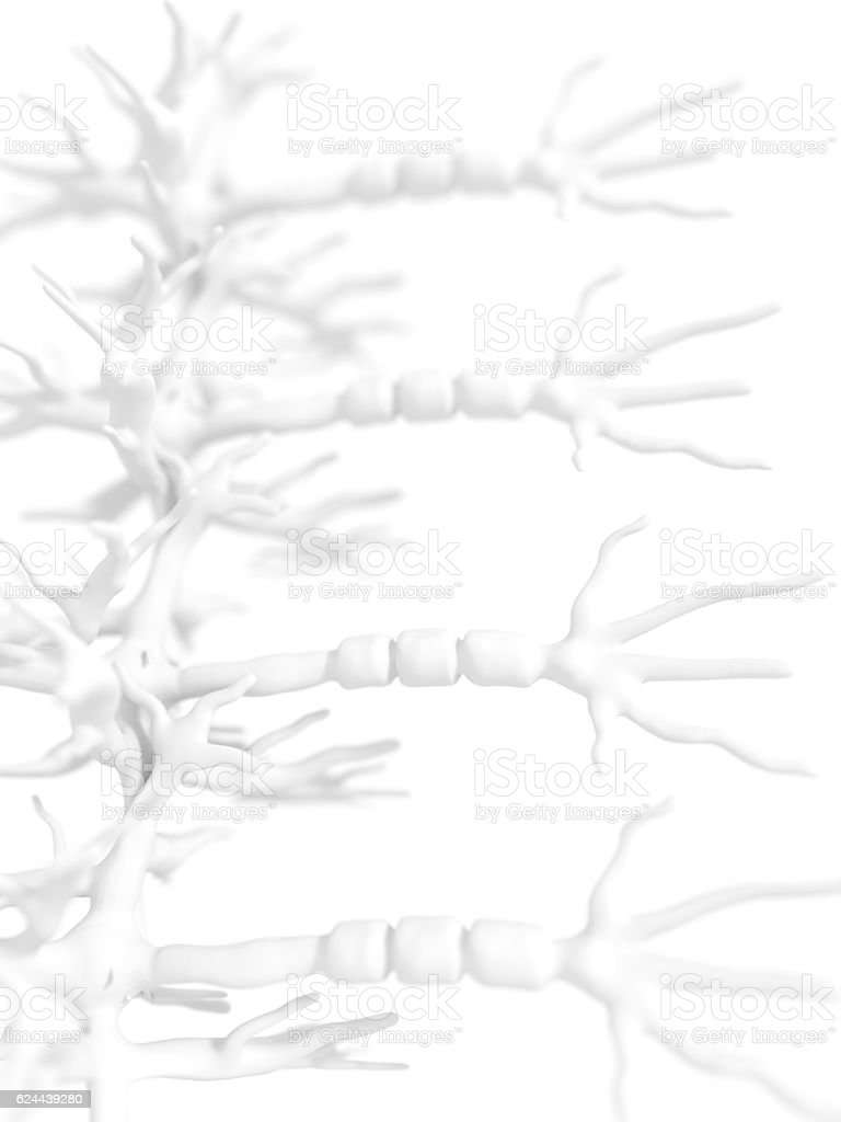 Neurons Group on white stock photo
