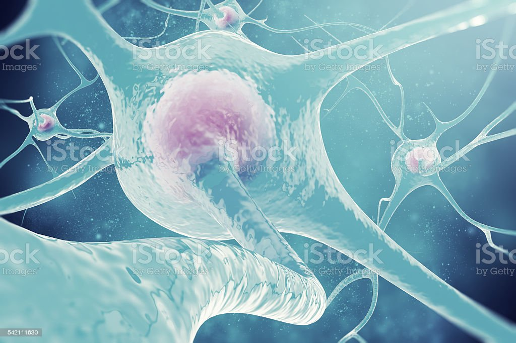 Neurons of the nervous system. 3d illustration nerve cells stock photo