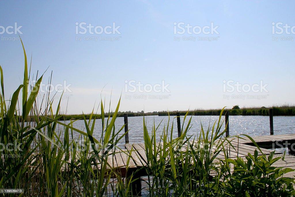 Neusiedler-Sea stock photo