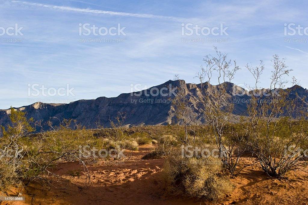 Nevada Desert royalty-free stock photo
