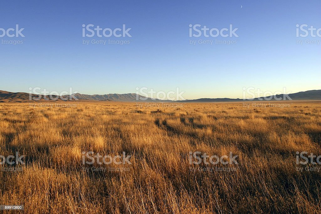 Nevada Morning stock photo