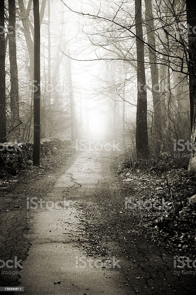 Neverending Road royalty-free stock photo