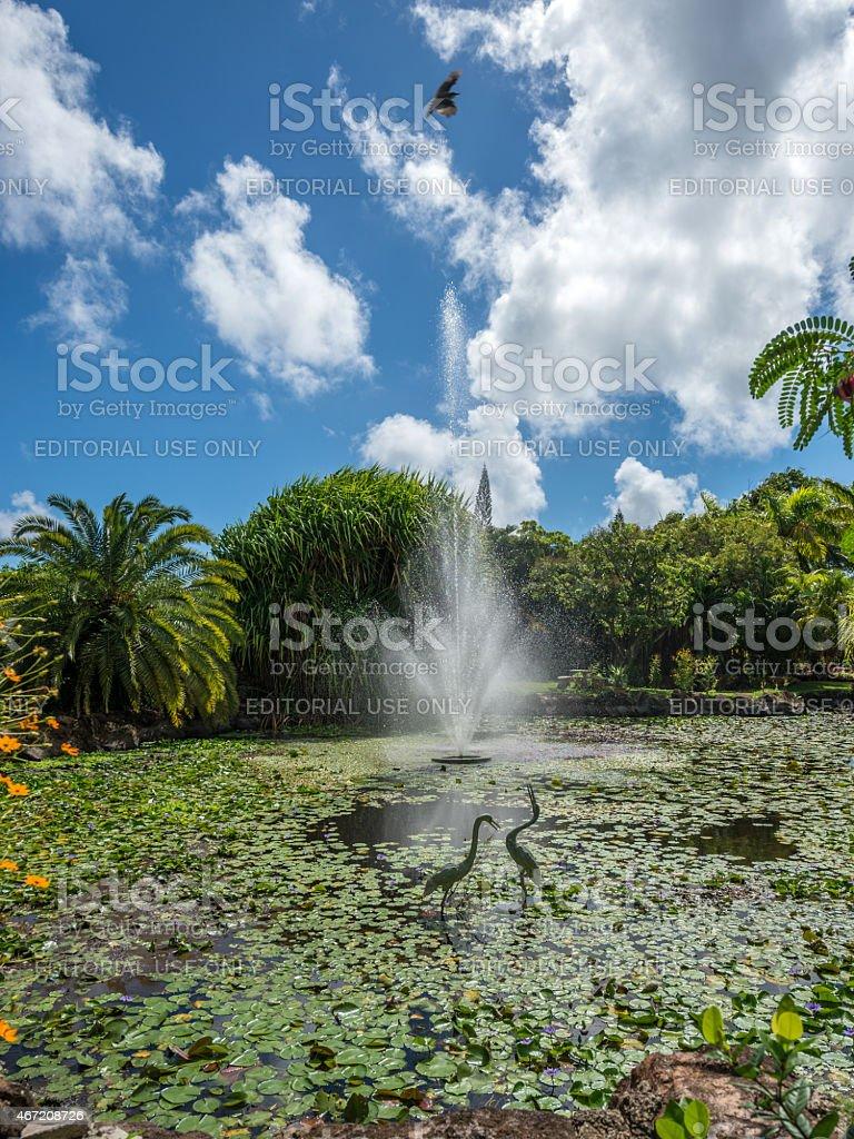 Nevis Botanical Gardens Fountain stock photo