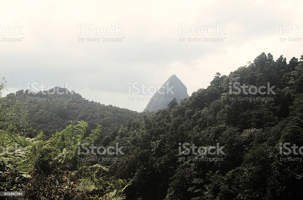 new angle of piton with bushes in foreground stock photo