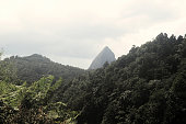 new angle of piton with bushes in foreground
